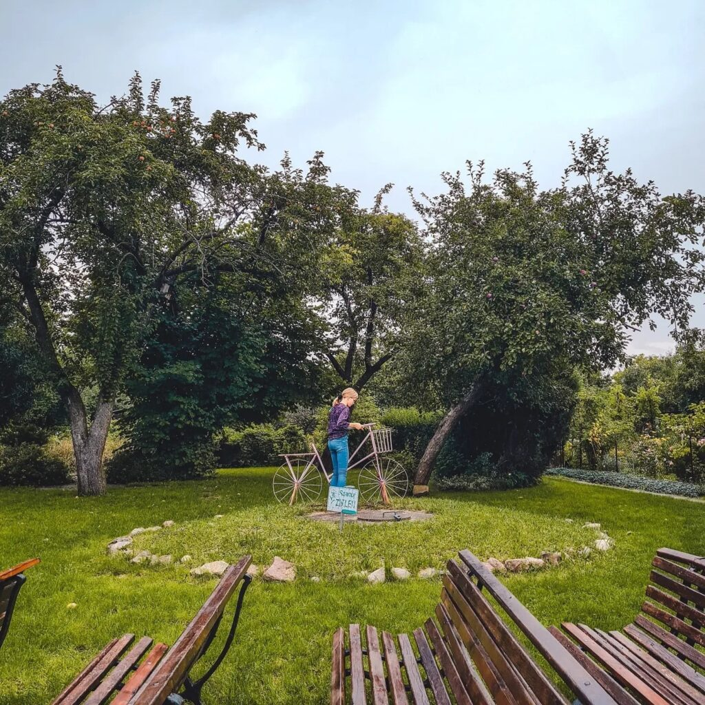 Ogródki Działkowe na Żoliborzu